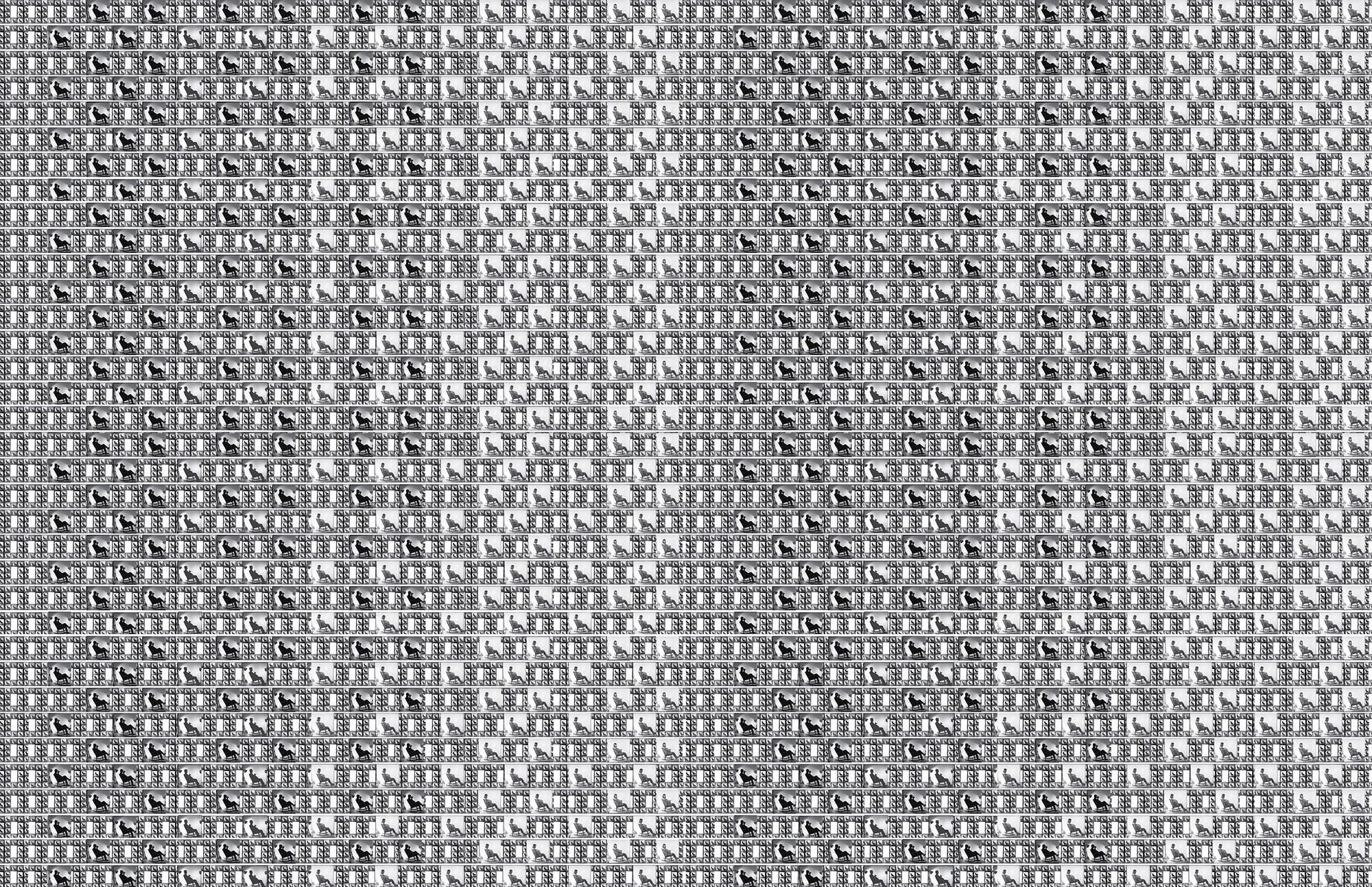 Echoes_Muybridge_Whistler_Pattern